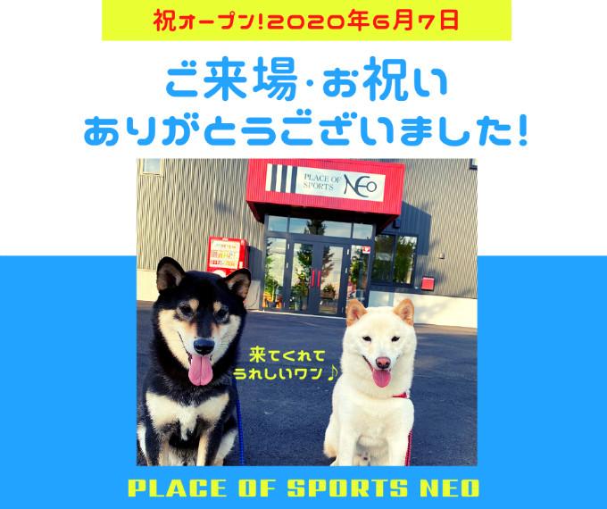 札幌レンタルテニスコート PLACEOFSPORTSNEO オープン お祝いありがとうございました!