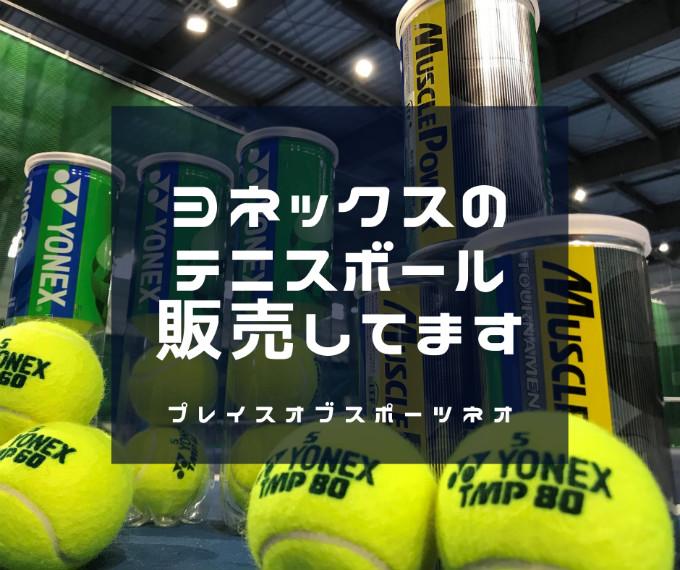 ヨネックステニスボール マッスルパワートーナメントTMP80 札幌テニスコートレンタル施設 プレイスオブスポーツネオ