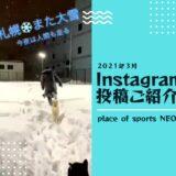 プレイスオブスポーツネオ NEO犬とNEOオーナー雪遊び インスタグラム投稿