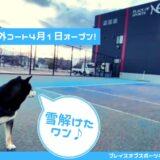 【屋外コート】2021年4月1日~オープン!札幌レンタルテニスコートNEO