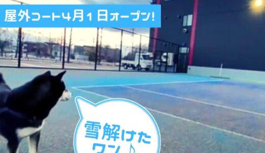 【札幌屋外テニスコート】シーズンスタート!料金は大人平日1,650円~(税込・1時間)